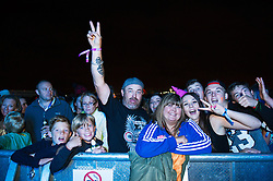 The audience at the Brownstock Festival in Essex.