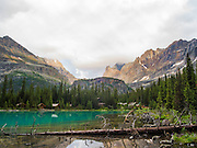 Low-angle view of beautiful, remote Lake O'Hara and Yukness Mountain (extreme left) in the background, in Yoho National Park, near Field, British Columbia, Canada