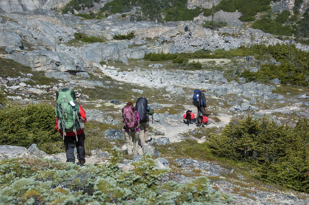 Backpackers with backpacking dogs work along the Chilkoot Trail. PLEASE CONTACT US FOR DIGITAL DOWNLOAD AND PRICING.
