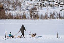 THEMENBILD - eine Frau mit Kind und Hunden in der winterlichen Landschaft, aufgenommen am 16. Januar 2021 in Kaprun, Österreich // a woman with child and dogs in the winter landscape, Kaprun, Austria on 2021/01/16. EXPA Pictures © 2021, PhotoCredit: EXPA/ JFK