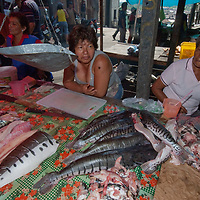 Fish merchants wait for buyers in an outdoor market in upper Belem, a crowded neighborhood in Iquitos, Peru.
