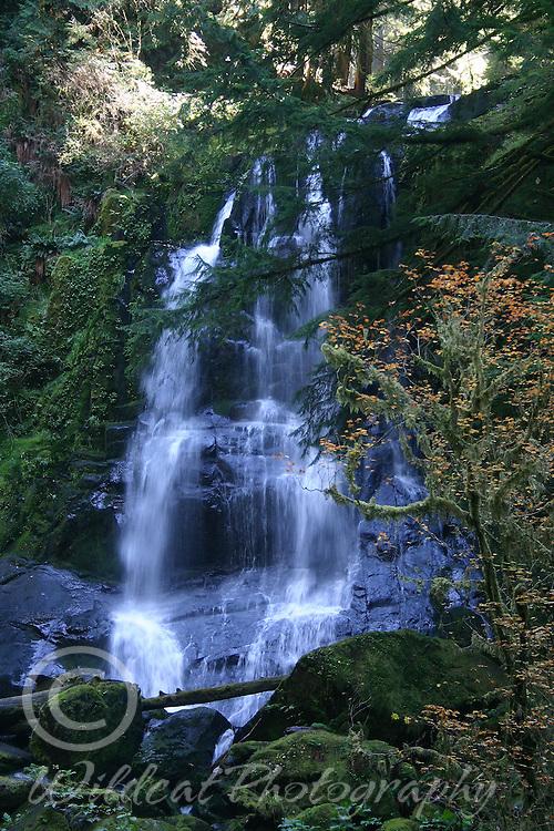 Upper Kentucky Falls