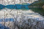 Lake Crescent Area