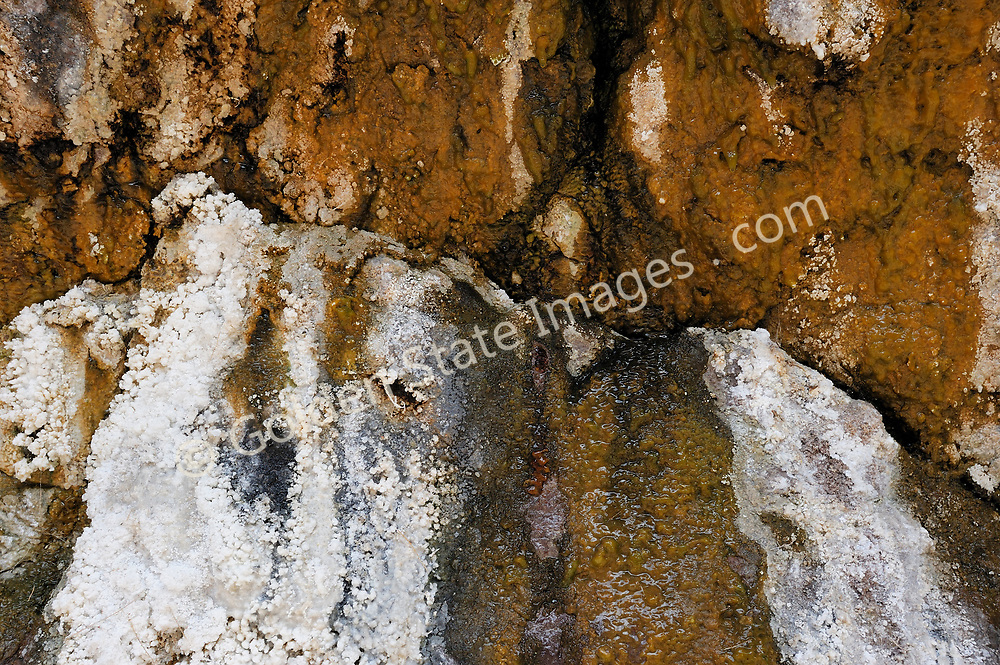 Mineral deposits at a hot spring in Black Canyon on the Colorado River<br /> <br /> Lake Mead National Recreation Area