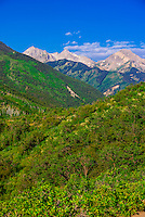 Rim Creek Trail, Snowmass Village (Aspen), Colorado USA.