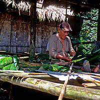 South America, Peru, Amazon River. Roof thatcher