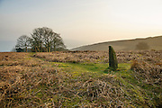 An ancient guidestoop marks the way across Bamford moor, Peak District