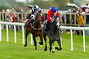 Forced ridden by Shane Kelly and trained by Richard Hughes in the CB Protection Novice Median Auction Stakes. Perregrin ridden by Franny Norton and trained by Mark Johnston in the CB Protection Novice Median Auction Stakes.  - Ryan Hiscott/JMP - 06/05/2019 - PR - Bath Racecourse- Bath, England - Kids Takeover Day - Monday 6th April 2019