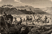 Using a 'long tom' to wash for gold in the Californian gold fields.  The miners diverted the water courses, then dug out the ore-bearing sands which they washed for gold.  The Californian Gold Rush began in 1849.  From 'Underground Life; or, Mines and Miners' by Louis Simonin (London, 1869). Wood engraving.