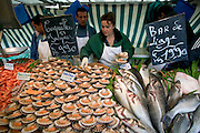Scallops, called Coquilles St. Jacques in France (shells of St. James) for sale in the weekend market in Neuilly, France, along with bar fish. (From a photographic gallery of fish images, in Hungry Planet: What the World Eats, p. 205).