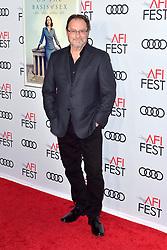 November 8, 2018 - Los Angeles, Kalifornien, USA - Stephen Root bei der Weltpremeire des Kinofilms 'On the Basis of Sex' auf dem AFI FEST 2018 im TCL Chinese Theatre. Los Angeles, 08.11.2018 (Credit Image: © Future-Image via ZUMA Press)