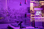 The interior of a closed small business gives a purple hue during the third lockdown of the Coronavirus pandemic, in the City of London, on 26th February 2021, in London, England.