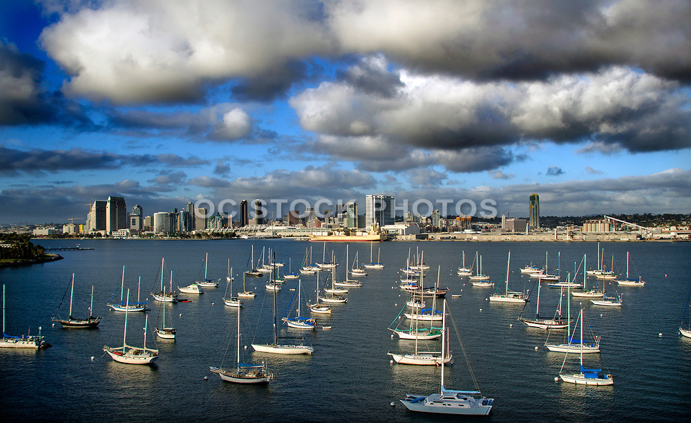 Downtown San Diego Skyline at North San Diego Bay
