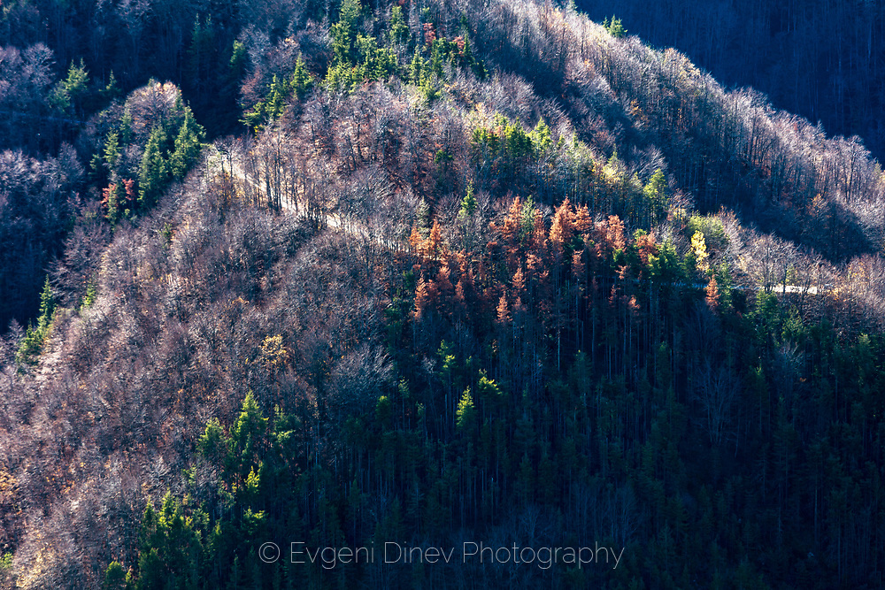 Late autumn in the mountain
