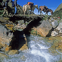 A pack train for a National Geographic archaeology expedition crosses a bridge over a rushing stream in Quebrada Moyoc, a deep valley in  Peru's Cordillera Vilcabamba mountains.