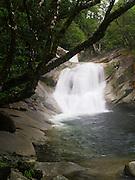 Josephine Falls, within the Wooroonooran National Park, near Babinda, QLD, Australia.
