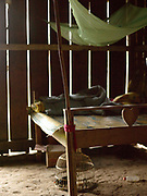 A wooden bed in a house in the Hmong village of Ban Chalern, Phongsaly province, Lao PDR. The remote and roadless village of Ban Chalern is situated along the Nam Ou river (a tributary of the Mekong) and will be relocated due to the construction of the Nam Ou Cascade Hydropower Project Dam 7. The Nam Ou river connects small riverside villages and provides the rural population with food for fishing. But this river and others like it, that are the lifeline of rural communities and local economies are being blocked, diverted and decimated by dams. The Lao government hopes to transform the country into 'the battery of Southeast Asia' by exporting the power to Thailand and Vietnam.