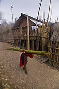 An Apatani tribal man walks through the rows of bamboo huts on stilts in the village of Hijja, Arunachal Pradesh. The Apatani tribe are one of hundreds of indigenous tribes scattered across India, particularly the north east. Their origins are from Mongolian nomadic tribes whom settled on the Ziro plateau, close to the Chinese border, they practice fixed agriculture as well as forestry, planting trees on the rim of the plateau as well as bamboo forests from which they derive fire wood, building their homes as well as using the bamboo for all manner of applications in their daily lives, cooking utensils and household containers amongst other uses. They carefully cultivate bamboo forests allowing them to grow, but not flower and die, as this would spell disaster for their very own existence. They also tend to their rice fields and live stock for what is mostly a subsistence economy. The Indian constitution recognizes over 500 indigenous tribes, which account for 8.5% of the total population.