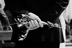 Reportage sviluppato ad Alessano (LE). Viene presa in considerazione fotograficamente, la gente che popola il paese nei suoi bar, piazze, strade, giardini pubblici. Ed, insieme a questa, i particolari e gli eventi caratterizzanti il luogo...Un uomo tiene tra le mani un ramoscello di ulivo, mentre ascolta la messa della domenica delle Palme.