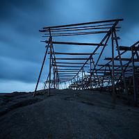 Empty cod stockfish drying racks rise into a dark sky, Reine, Moskenesøy, Lofoten Islands, Norway