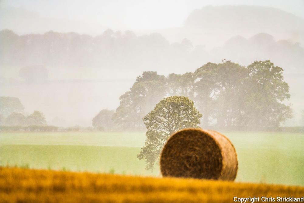 Oxnam, Jedburgh, Scottish Borders, UK. 19th September 2018. 'Storm Ali' blows across the autumnal landscape near Jedburgh in the Borders.