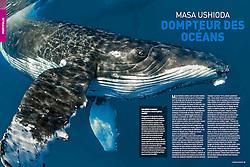 Plongée Magazine, December 2013, Photographer Portfolio, France, Image ID: Humpback-Whale-0201