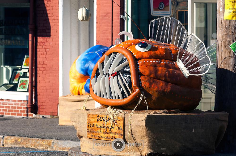 Pumpkin art for 2014 Damariscotta Maine Pumpkinfest