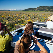 Searching for wildlife in Grand Teton National Park on a Teton Science Schools wildlife tour. Using van roof hatches. (Greg Peck, Sean Baker, Maura Bushior, Tracy Logan)