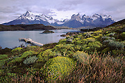 Paine Massif and Lake Pehoe.  Torres de Paine National Park, Chile.
