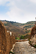 A cobble stone road leading up to the Hermitage hill with terraced vineyards in the background. Tain l'Hermitage, Drome, Drôme, France, Europe