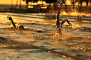 A swimmer's arm reaches toward the sky while swimming back stroke as the sun rises over North Shore pool in St. Pete Florida. The pool is a 50m (olympic length) long course pool. Centre trained at North Shore twice a day for most of the seven day training trip.