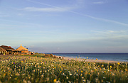 View of meadow with beach and sea in background, Bolonia, Andalusia, Spain
