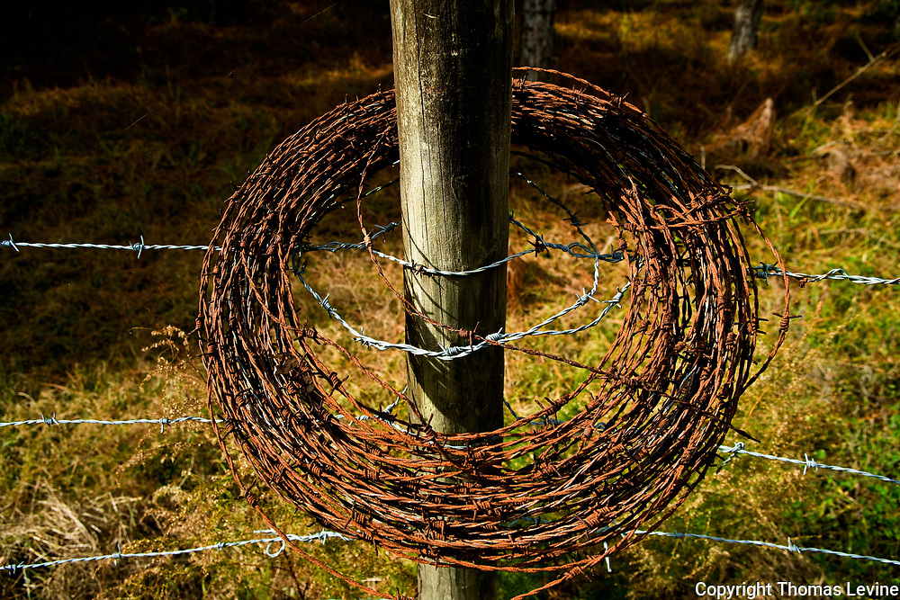Barbed wire sitting on a fence post in rural farm area of Florida. RAW to Jpg