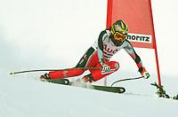 Alexandra MEISSNITZER,                                     Ski Alpin    Abfahrt Damen …sterreich