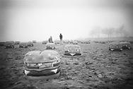 Hamburger models on beach, Milwaukee WI