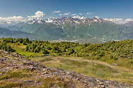Alpine meadow overlooking Placer River Valley in Chugach National Forest in Southcentral Alaska. Summer. Morning.