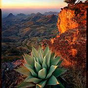 South Rim Sunrise, Big Bend National Park. 4x5 Kodak Ektar 100. photo by Nathan Lambrecht