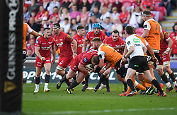 Scarlets on the attack<br /> <br /> Photographer Mike Jones/Replay Images<br /> <br /> Guinness PRO14 Round 22 - Scarlets v Cheetahs - Saturday 5th May 2018 - Parc Y Scarlets - Llanelli<br /> <br /> World Copyright © Replay Images . All rights reserved. info@replayimages.co.uk - http://replayimages.co.uk