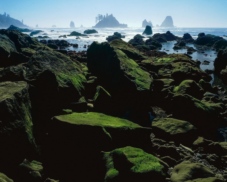 Beach boulders, Pacific Coast, Olympic National Park, Washington, USA