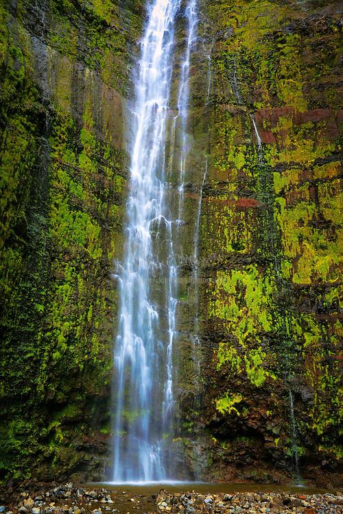 The Pipiwai trail to Waimoku Fall in the Kipahulu area of Haleakala National Park in Maui, Hawaii