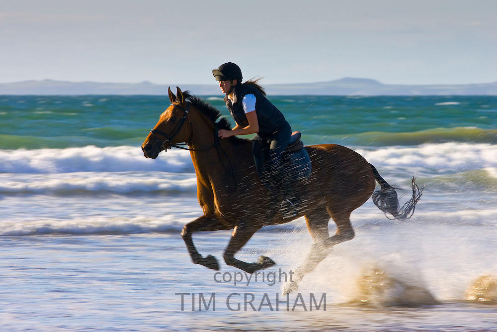 Young woman rides a bay horse on Broad Haven Beach, Pembrokeshire, Wales, United Kingdom