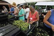Allerton Garden, Kauai, Hawaii, (editorial use only-no model release)<br />