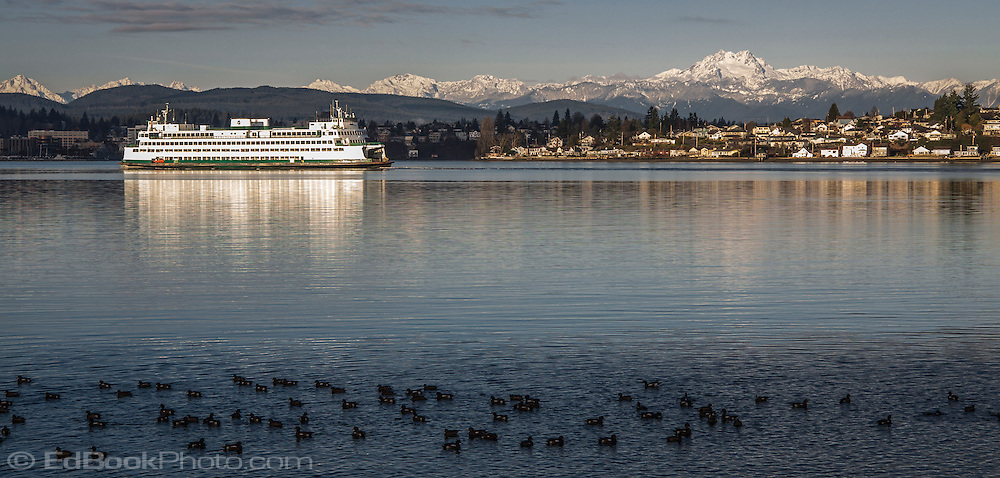 A Washington State Ferry is arriving at Bremerton in Sinclair Inlet of Puget Sound in western Washington state, USA in the winter with the snowcovered Olympic Mountains in the distance.
