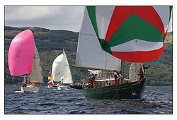 The third days racing at the Bell Lawrie Yachting Series in Tarbert Loch Fyne ..Perfect conditions finally arrived for competitors on the three race courses...Glenafton 795C in Class 6