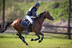 Verwimp Jarno, (BEL), Edition Limitee Dew Drop<br /> Nationale Finale AVEVE Eventing Cup voor Pony's<br /> Minderhout 2016<br /> © Dirk Caremans