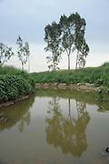 Israel, Gan Region, Hiriya, Sharon Park Ayalon Stream