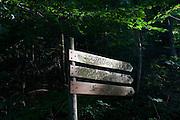 Walking route sign marks distance in km through dark forest in the German Black Forest region near village of Kälbermühle