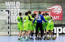 25.10.2016, BSFZ Suedstadt, Maria Enzersdorf, AUT, HLA, SG INSIGNIS Handball WESTWIEN vs ALPLA HC Hard, Grunddurchgang, 10. Runde, im Bild die Spieler von WestWien jubeln ueber den Sieg // during Handball League Austria, 10 th round match between SG INSIGNIS Handball WESTWIEN and ALPLA HC Hard at the BSFZ Suedstadt, Maria Enzersdorf, Austria on 2016/10/25, EXPA Pictures © 2016, PhotoCredit: EXPA/ Sebastian Pucher