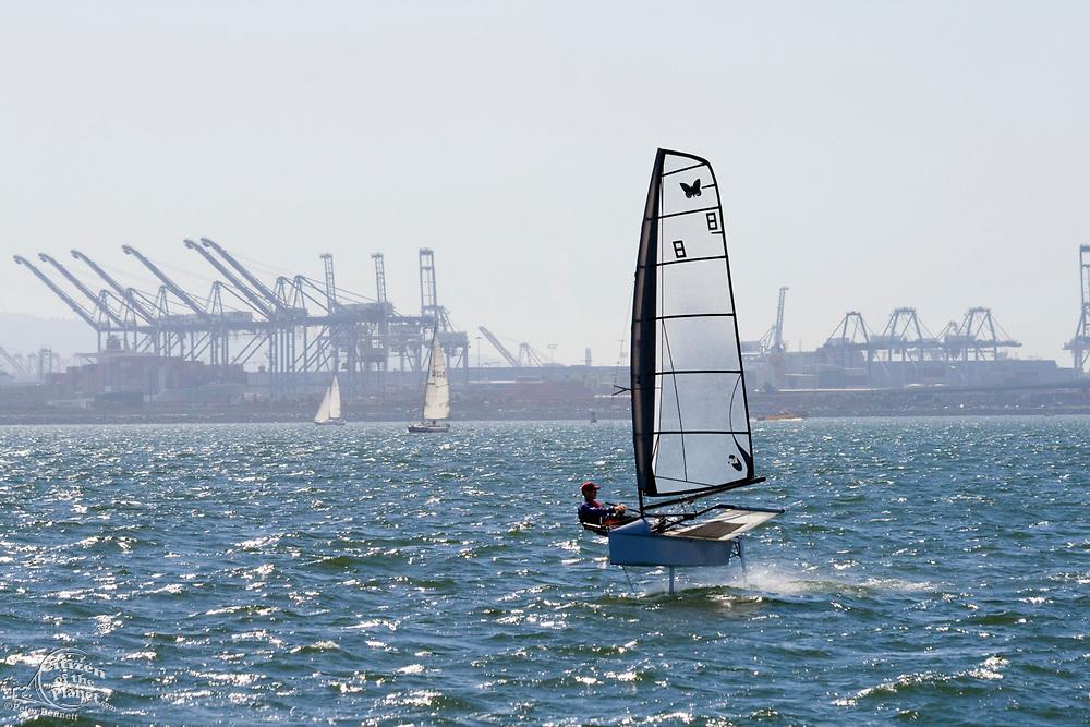Hydrofoil Sailboat, Long Beach Harbor, California, USA