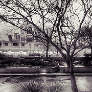 Black and White view of the Plaza Lights along Brush Creek
